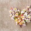 Decorative heart from spring flowers. - Stok fotoğraf