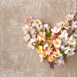 Decorative heart from spring flowers. - 图库照片