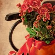 Holidays Card with Begonia flower - Stok fotoğraf