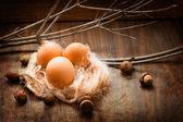 Ovos de páscoa — Foto Stock
