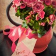 Holidays Card with Begonia flower — Stock Photo