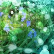 little blue flowers in the spring background — Stock fotografie