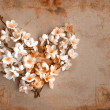Decorative heart from spring flowers — Stock Photo