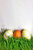 Uova di pasqua sull'erba — Foto Stock
