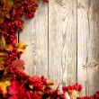 Autumn frame from ashberry and maple leaves on wooden plates with grunge texture — Stock Photo #24979811