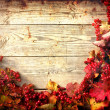 Autumn frame from ashberry and maple leaves on wooden plates with grunge texture — Stock Photo #24979847