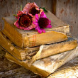 Royalty-Free Stock Photo: Picture of a flowers lying on an antique books
