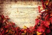 Hojas de otoño marco de ashberry y arce sobre placas de madera con textura grunge — Foto de Stock