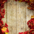 Stock Photo: Vintage Autumn border