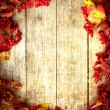 Vintage Autumn border — Stock Photo #24980965