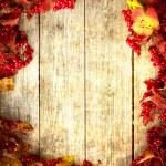 Vintage Autumn border — Stock Photo