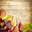 Vintage Autumn border from apples and fallen leaves on old wooden table — Stock Photo #24980979