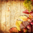 Vintage Autumn border from apples and fallen leaves on old wooden table — Stock Photo #24981005
