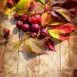 Vintage Autumn border from apples and fallen leaves on old wooden table — Stock Photo #24981023