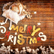 vintage christmas background — Stock Photo #24983557