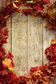 复古秋季边框 — 图库照片