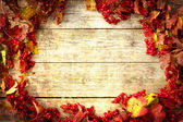 Vintage Autumn border — Stockfoto