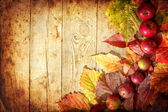 Vintage Autumn border from apples and fallen leaves on old wooden table — Stock fotografie
