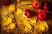 Bushel of red apples and autumn leaves — Stock Photo