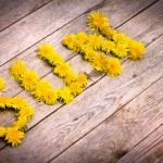 Постер, плакат: Yellow dandelions forming word SUN