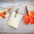 Autumn leaves and vintage papers — Stock Photo