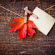 Autumn leaf and vintage paper — Stock Photo