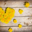 Yellow dandelions forming heart — Stock Photo