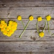 Yellow dandelions forming word  I love you — Stock Photo