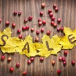 Autumn leaves with word Sale and little red apples — Stock Photo