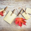 Autumn leafs and vintage papers — Stock Photo