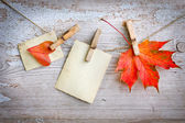 Autumn leaves and vintage papers — Foto de Stock
