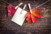 Autumn leafs and old paper — Stock Photo