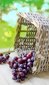 Grapes in basket — Stock Photo