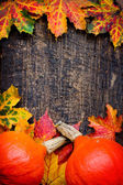 Autumn leaves and pumpkins backgroun — Stock Photo