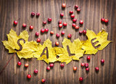 "Autumn leaves with word ""Sale"" and little red apples — Stock Photo"