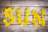 "Yellow dandelions forming word ""SUN"" — Stock Photo"