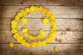 Yellow dandelions forming smile — Stock Photo