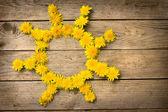 Yellow dandelions forming sun — Stock Photo