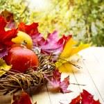 Thanksgiving day decoration — Stock Photo