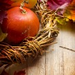 Autumn decoration — Stock Photo