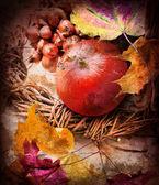Calabaza y hojas de otoño — Foto de Stock