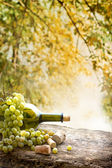Wine bottle, grape and corks — Stock Photo