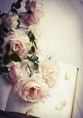 Roses and book — Stock Photo