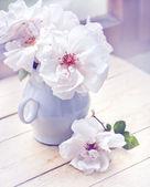 Weisse rosen in vase — Stockfoto