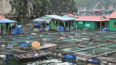 Floating fishing village — Stock Video