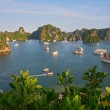 Halong Bay, Vietnam — Stock Photo #13367719