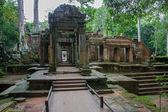 Ta Prohm, Angkor Wat — Stock Photo