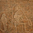 Hieroglyphs — Stock Photo #14548641