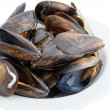 Boiled mussels — Stock Photo #17610017