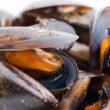Boiled mussels closeup — Stock Photo #17610103